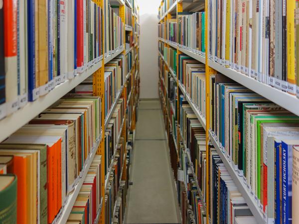 Volle Bücherregale